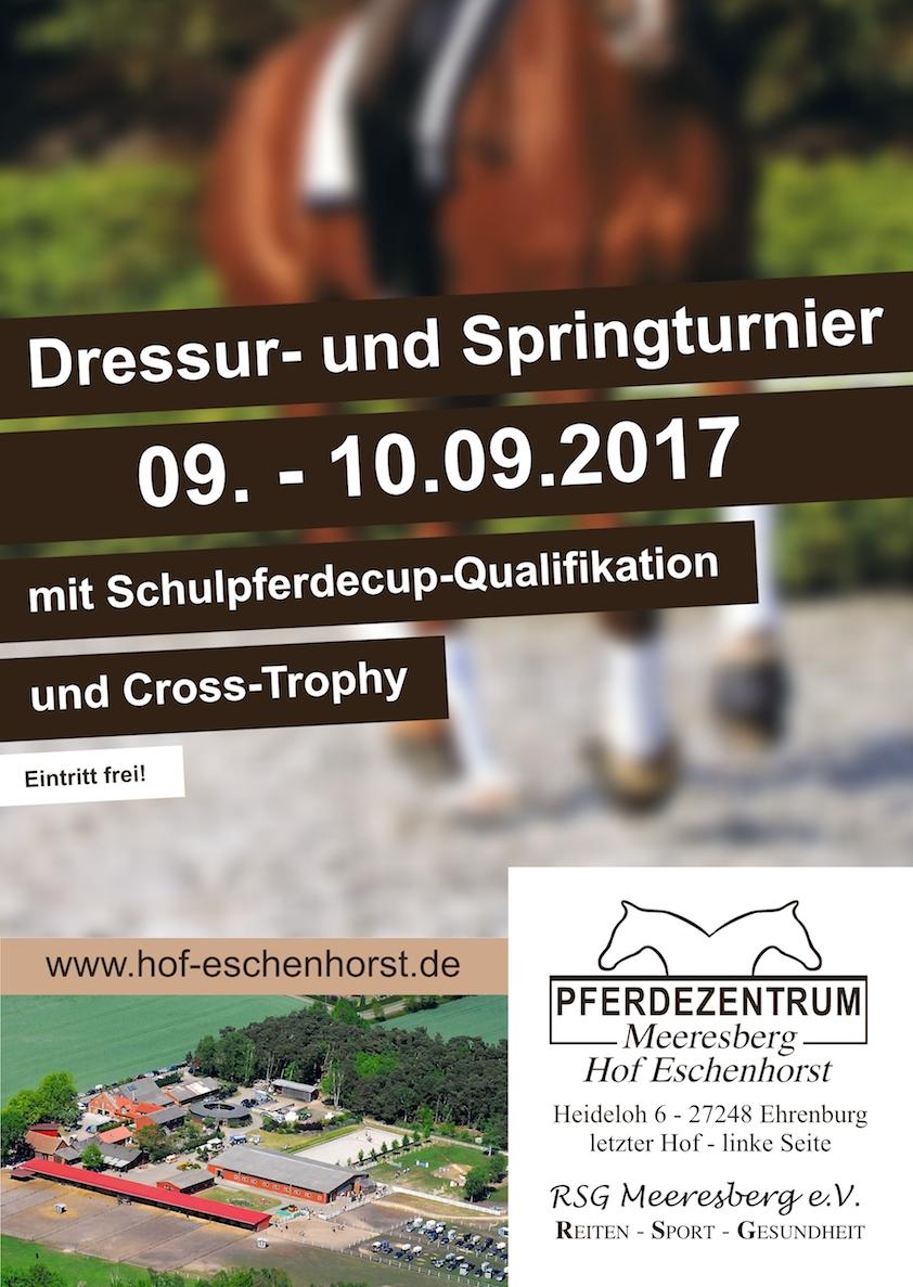 Plakat: Pferdezentrum Meeresberg, Dressur- und Springturnier
